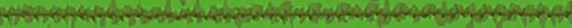 SeedCraft.Net ~ Dein 1.16.5 CityBuild Server Minecraft Server
